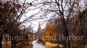 سه قدم در پاییز