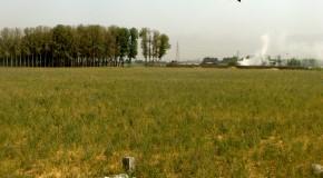 روستای سبز فیروزبهرام در خطر است: تصفیه فاضلاب در ۵۰ متری خانه بهداشت
