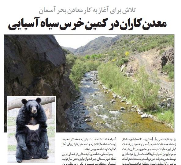 معدنکاران در کمین خرس سیاه آسیایی