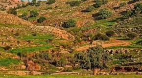 نگاره:  چشمانداز روستای قلعه بردی اندیکا