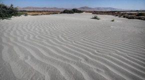نگاره:  اینجا زمانی زیر آبهای #دریاچه_ارومیه بوده است و حالا شنهای روان دو #روستا را خالی از سکنه کرده استفاجعههای حوزه #محیط_زیست دیگر امور متعلق به آینده نیستند این #بیابان حالا ۱۳ کیلومتر با #آب فاصله دارد#urmia #lake #urmialake #environment #desertification #iran #travel #nature #desert