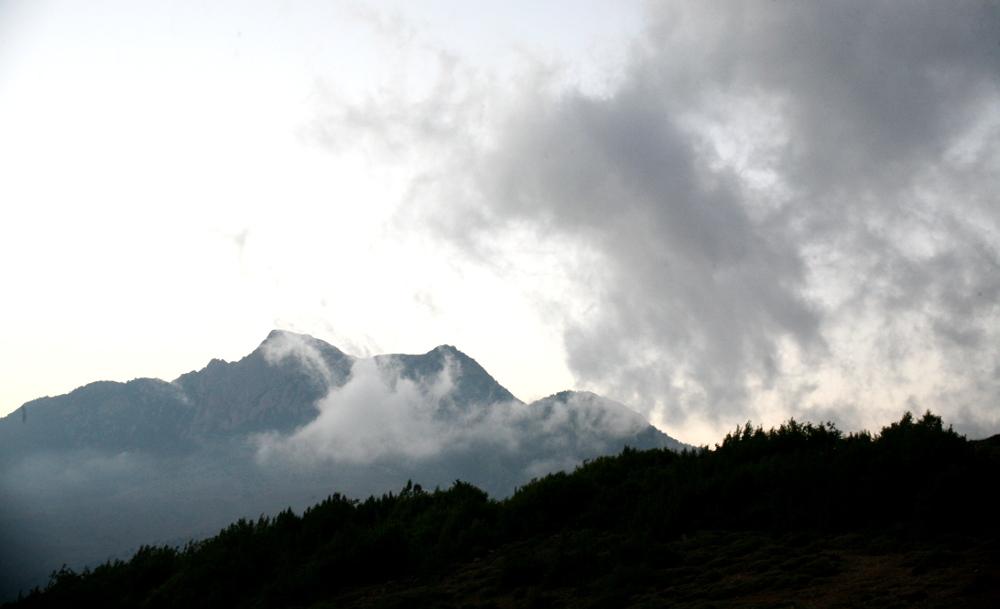 جنگل کبود و کوه کبود و افق کبود
