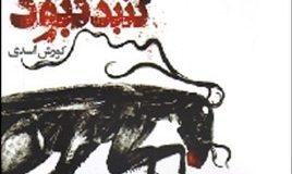 درباره «گنبد کبود» کورش اسدی، و جهان غریبش